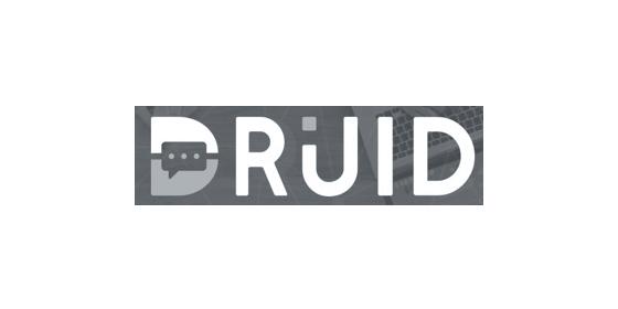 Druid logo grey