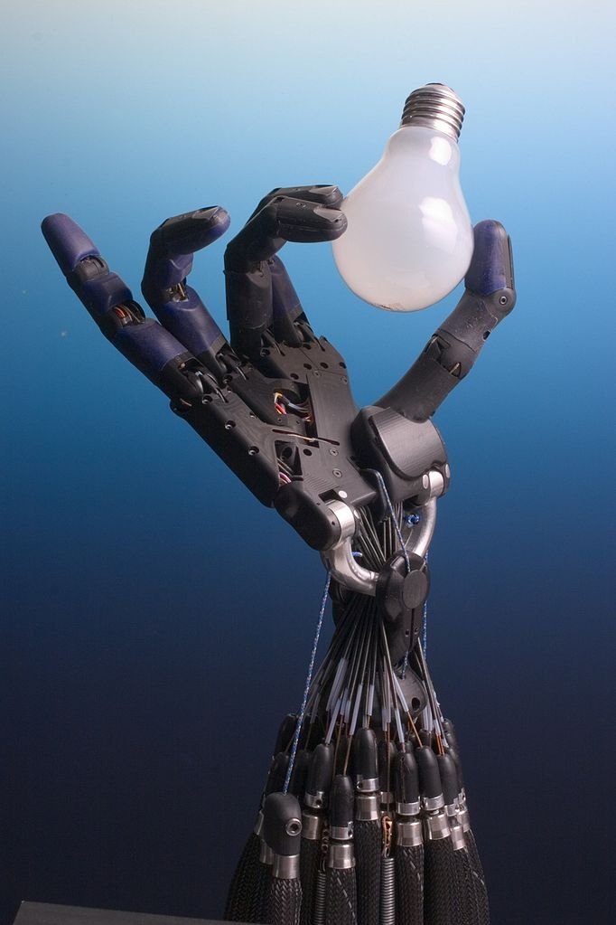 682px Shadow Hand Bulb large