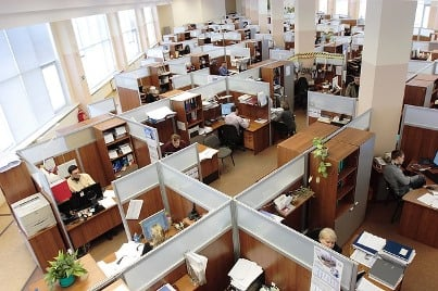 cubicle workers