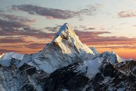 Everest Group Process Mining