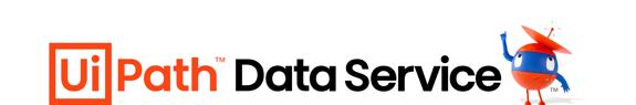 Data Service logo